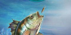 勇闯海的尽头!HTML5游戏《黄金渔场》热力公测!