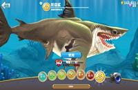 《饥饿鲨:世界》有什么鲨鱼 全鲨鱼技能及分类介绍