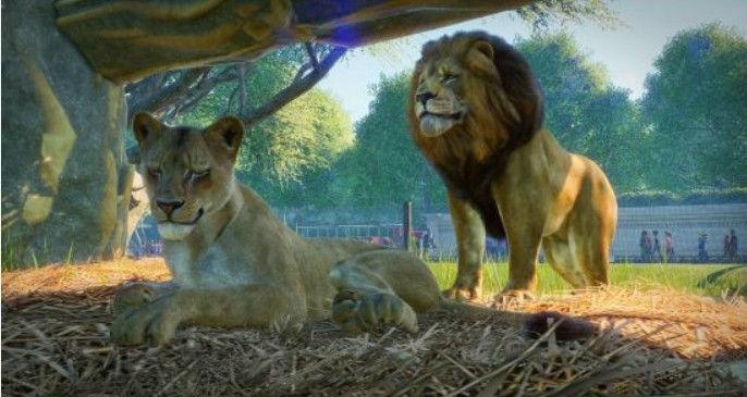 动物园之星IGN 8.5分 满意的公园模拟游戏